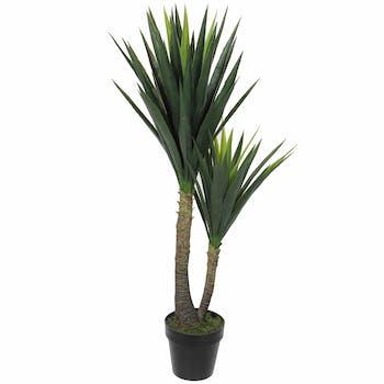 Yucca en pot 120 cm