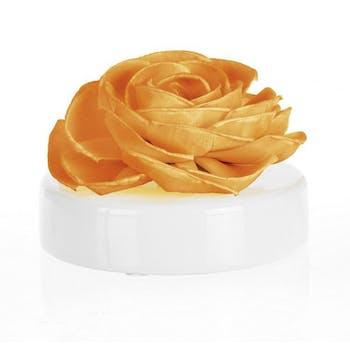 Diffuseur de parfum Fleur Miel Vanille Rosea CLEM GOA 200ml