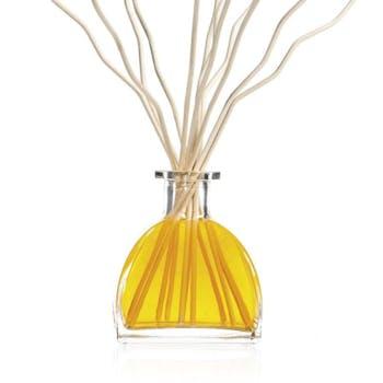 Diffuseur de parfum Origin Cèdre et Vanille CLEM GOA 250ml