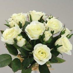 Composition florale bouquet de 7 ROSES blanches