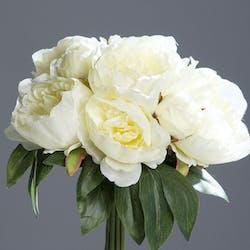 Bouquet de pivoines crème