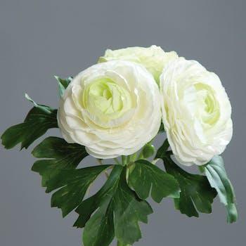 Composition florale bouquet de 3 renoncules blanches