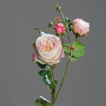 Rose 2 fleurs avec boutons Rose-Blanc 60CM