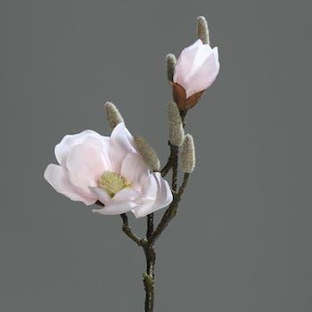 Magnolia couleur Rose 2 fleurs dont 1 bouton 44cm