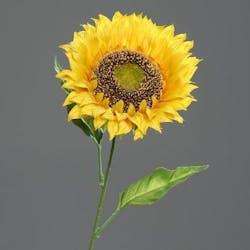Tournesol jaune, 67cm