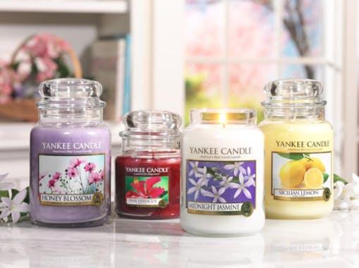Jasmin De Minuit bougie parfumée petite jarre YANKEE CANDLE