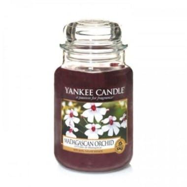 Orchidée de Madagascar bougie parfumée moyenne jarre YANKEE CANDLE