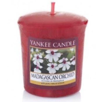 Orchidée de Madagascar bougie parfumée votive YANKEE CANDLE