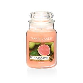 Délice de Goyave bougie parfumée grande jarre YANKEE CANDLE