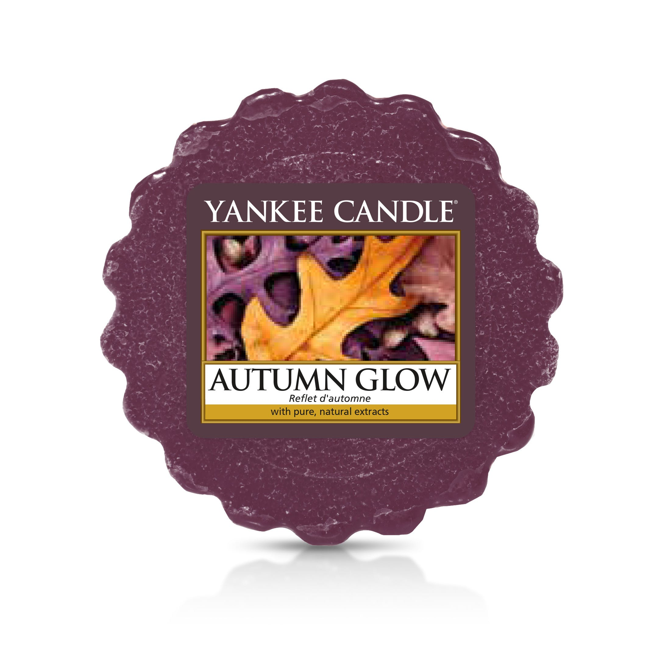 Reflets d'Automne tartelette YANKEE CANDLE