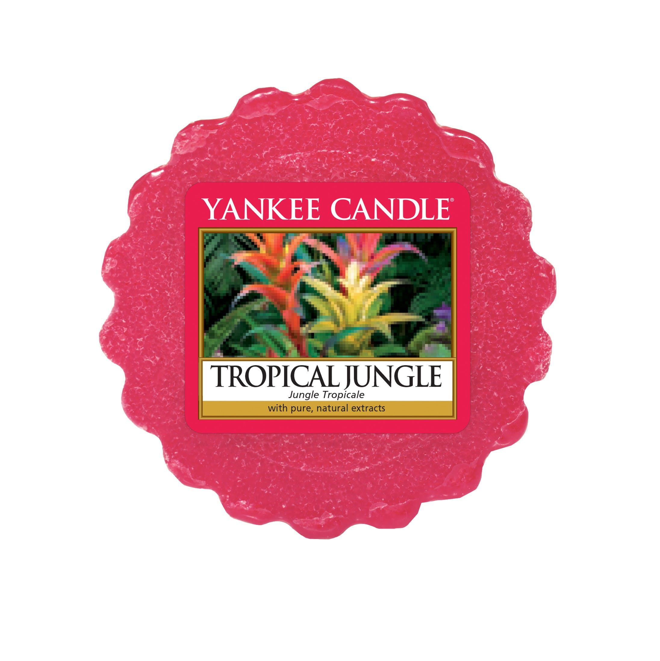 Jungle Tropical tartelette CANDLE
