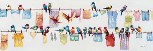 Tableau ANIMAL Ribambelle d'Oiseaux multicolores sur fils à linges couleurs vives 150x50cm