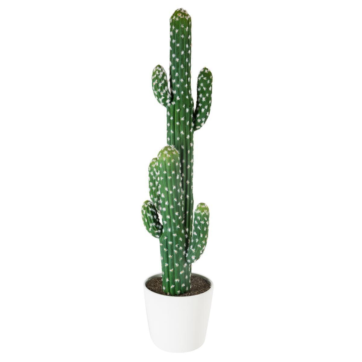 Cactus double dans pot céramique H77cm