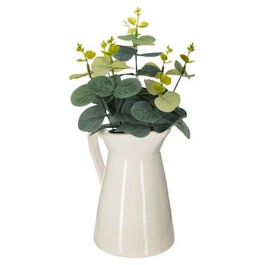 Eucalyptus dans pichet céramique