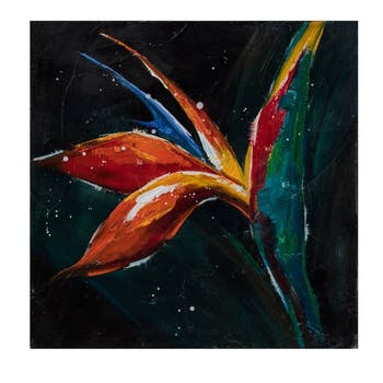 Tableau Fleur Oiseau de Paradis Gloss fond noir 40x40cm