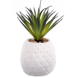 """Succulente Plante """"grasse"""" longues feuilles dans son pot blanc forme Ananas et pierres décoratives 9x9,5xH22cm"""