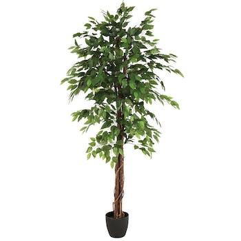 Ficus longue tige bois en pot rond noir feuillage tissu polyester H180cm