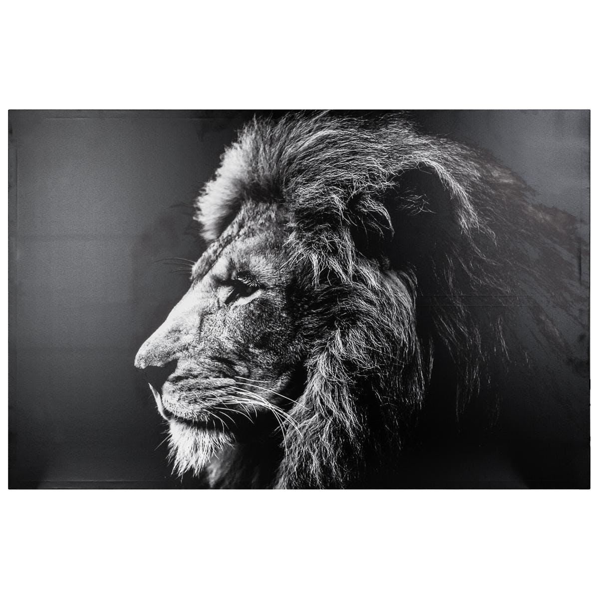 Tableau ANIMAUX Lion noir et blanc 78x118cm