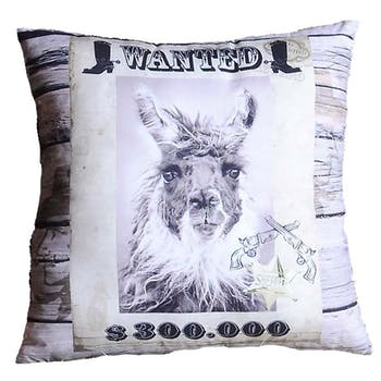 Coussin humour Wanted Lama 40x40cm WANTED