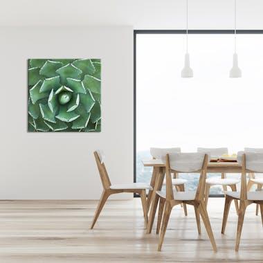 Tableau design cactus aluminium