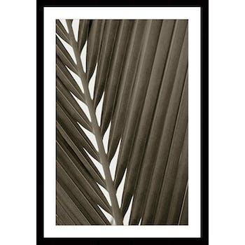 Affiche décorative encadrée feuille palmier visuel 1