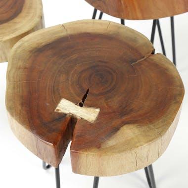 Table d'appoint tronc d'arbre acacia CANADA