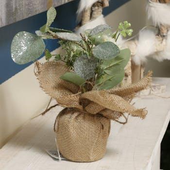 Eucalyptus en pot façon jute