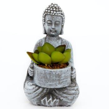 Bouddha pot avec succulente