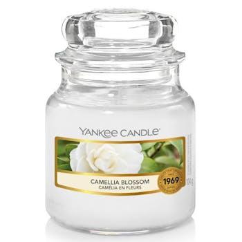 Camélia en fleurs bougie parfumée petite jarre YANKEE CANDLE
