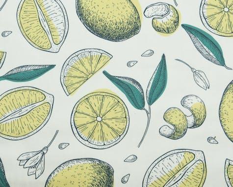 Coussin bain de soleil imprimé citrons