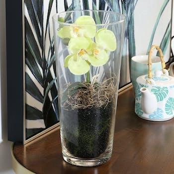 Phalaenopsis blanc vert en vase verre 30 cm