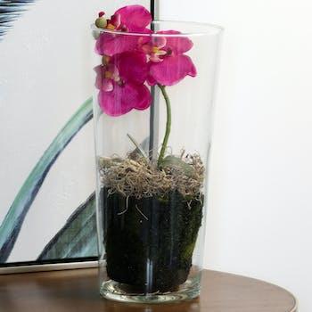 Phalaenopsis rose en vase verre 30 cm