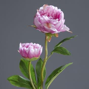 Pivoine 2 fleurs Lavande 60CM