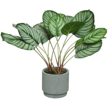 Plante calathée artificielle 42 cm en pot