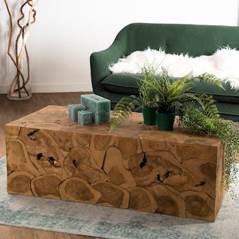 Table basse rectangulaire en bois de style exotique