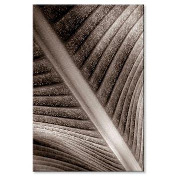 Tableau design feuille palmier visuel 2 aluminium