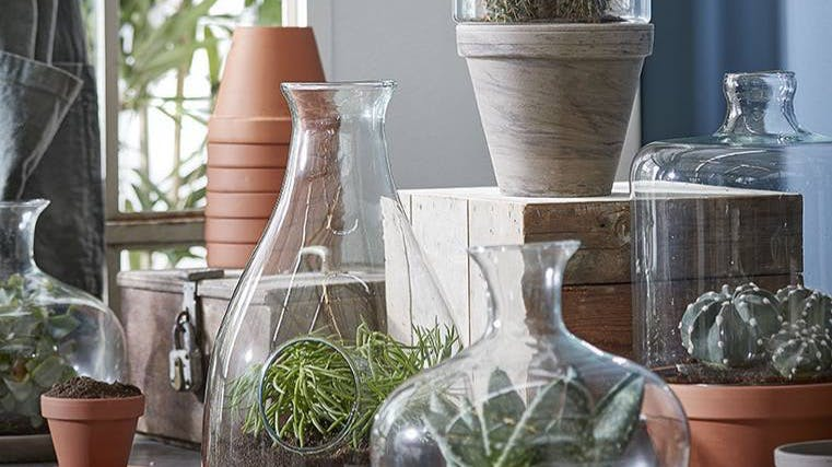Vases et cache-pots : en verre, en céramique...